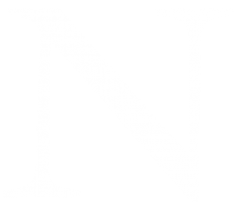 logo-N-white copy